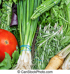 bunches of fresh cut green stuff close up - food background...