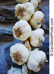 Plait of white garlic heads hanging on the stone wall