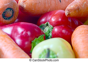 a bunch of fresh vegetables