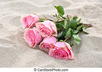 pink roses in beach sand - Pink rose bouquet in beach sand.