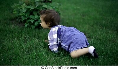 Cute little baby crawling on all fo