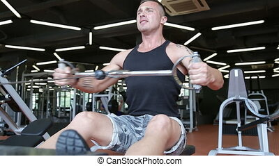 People training, working out, exercising in gym and fitness club