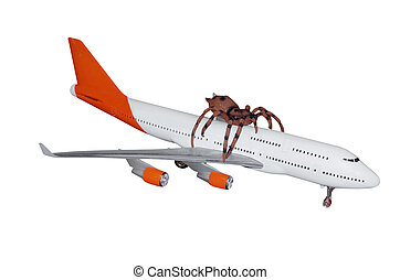 Border Control Nightmare - Spider Hitching a Ride on a...