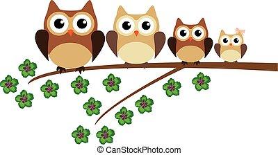 owl family - vecotr owl family