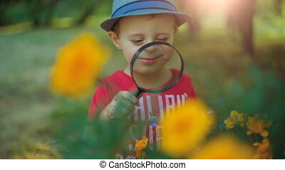 Boy exploring flowers with a magnifying glass - Young boy...