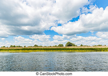 Danube Delta landscape - Landscape photo of Danube Delta in...