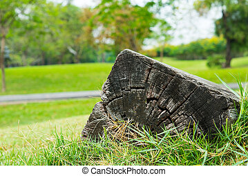 Square log - Old wooden square log on the ground in garden...