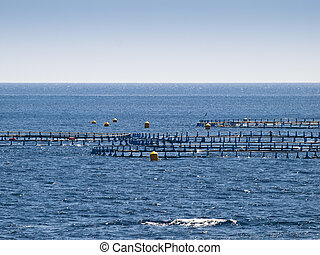 Offshore Fish Farm - Detail of an offshore fish farm pen
