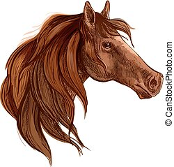 Bay horse with long mane portrait
