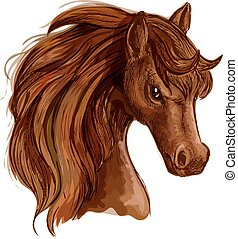 Brown arabian mare horse sketch for equine design - Brown...