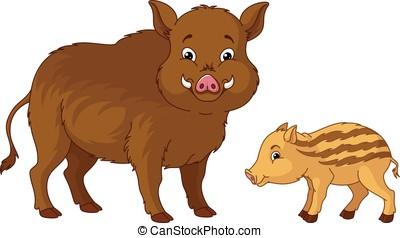 Wild Boar - Wild boar with her cub.