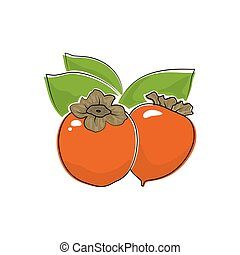 Persimmon Isolated on White - Orange Persimmon Isolated on...