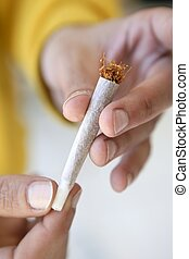 joint tobacco cigarette in hands just prepared - joint...