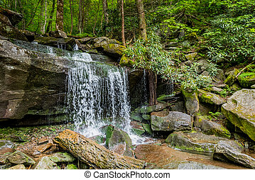 Side View of Waterfall on Hike to Rainbow Falls