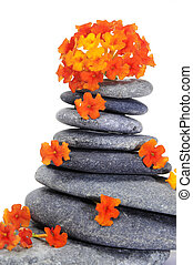 zen stones and flowers on a white background