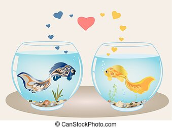 Fishes couple  in love