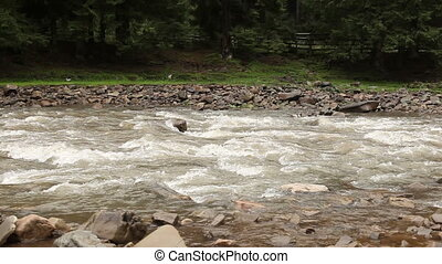 Beautiful river flows downstream with stones in it and near...