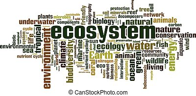 Ecosystem word cloud concept Vector illustration