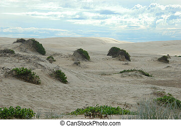Sand-dunes with patchy grass and blue sky background