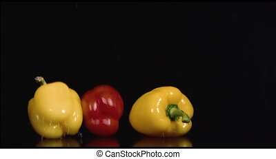 colored peppers over white background HD
