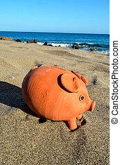 Piggy Bank on the Sand Beach