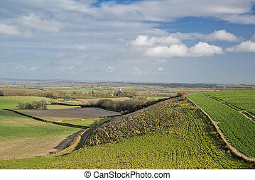 The Sussex weald at Berwick - Winter greens in the heart of...
