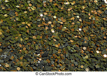 coins in water fountain