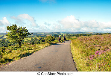 Riders on Dunkery Hill - Two horse riders on a summer day on...