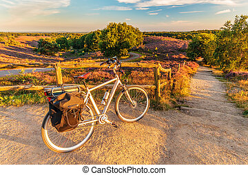 Electric bicycle in Dutch national park The Veluwe with...