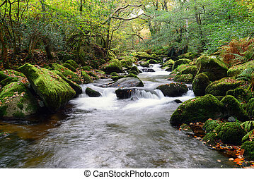 The River Plym - The river Plym cascading over mossy rocks...