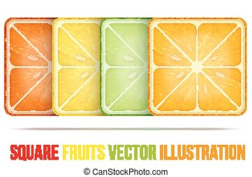 Set of icons Square fruits slices. Vector Illustration.