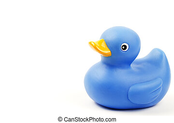one blue rubber duck on white background