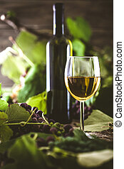 wine - Wine. Glass of white wine in wine cellar. Old white...