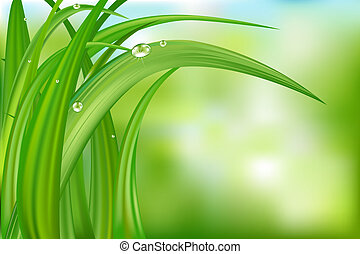Green Background With Grass - Green Grass Over Abstract...