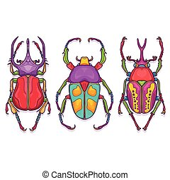 Set of Beetle Bugs, Insect Colorful