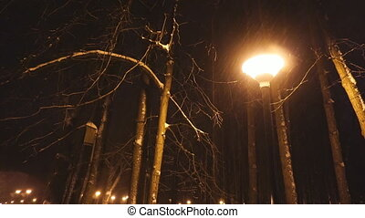 street light lamp at night - street light lamp under snow at...