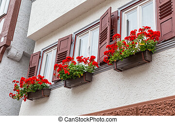 Autumn Calw city in Germany - Wall of old house with potted...