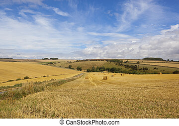 harvest in the yorkshire wolds - round bales of straw in a...