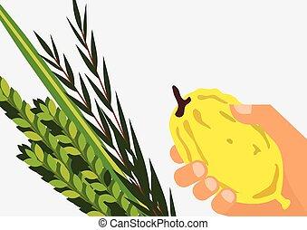 Jewish holiday Sukkot. Lulav ,Etrog, Arava and Hadas. Four...