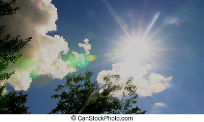 Windy sky with tree Sun sky clouds trees