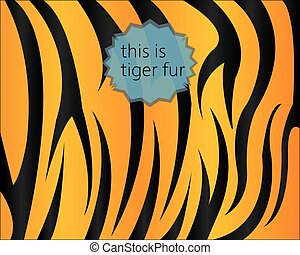 Big tiger fur texture, digital vect