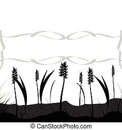grain field - illustration of grain field