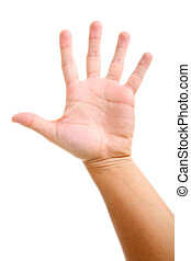 Open Hand - Palm open over white background. Human hand