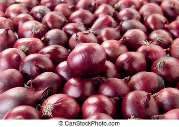 Red Onion isolated raw fresh vegetable on kitchen
