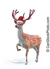 Spotted deer - red hat on Spotty a deer is isolated in a...