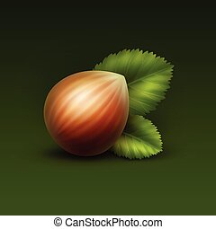 Vector Full Unpeeled Hazelnut with Leaves - Vector Full...