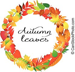 Autumnal round frame Wreath of autumn leaves Isolated design...