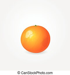 One ripe mandarin - Illustration of one ripe mandarin Glossy...