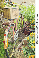 Vintag bicycle by tree - Image of vintage bicycle parked by...