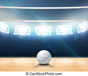 Indoor Floodlit Volleyball Court - A 3D rendering of an...